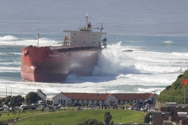 Pasha Bulka aground at Nobbys Beach Photo by Murray McKean